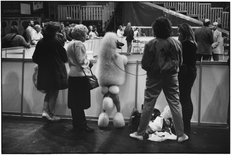 Birmingham, England, 1991 Photo:  Elliott Erwitt