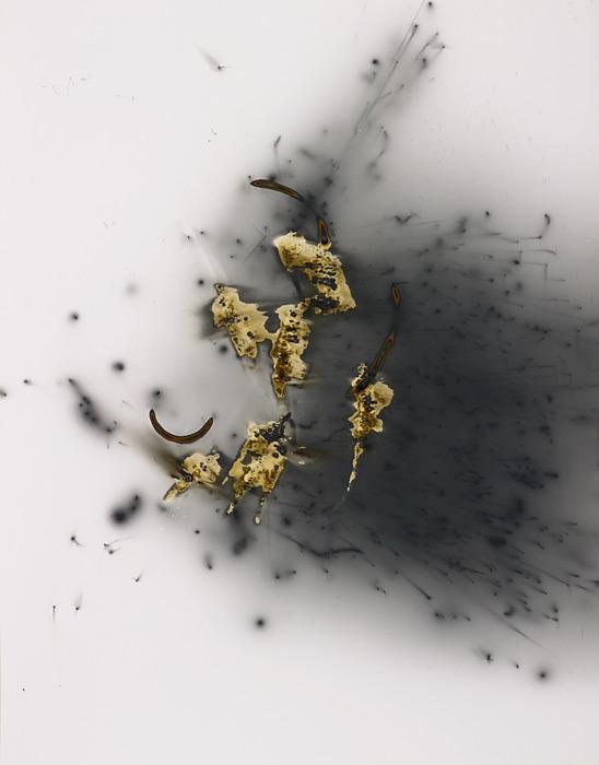 large-marco_breuer-untitled-fuse