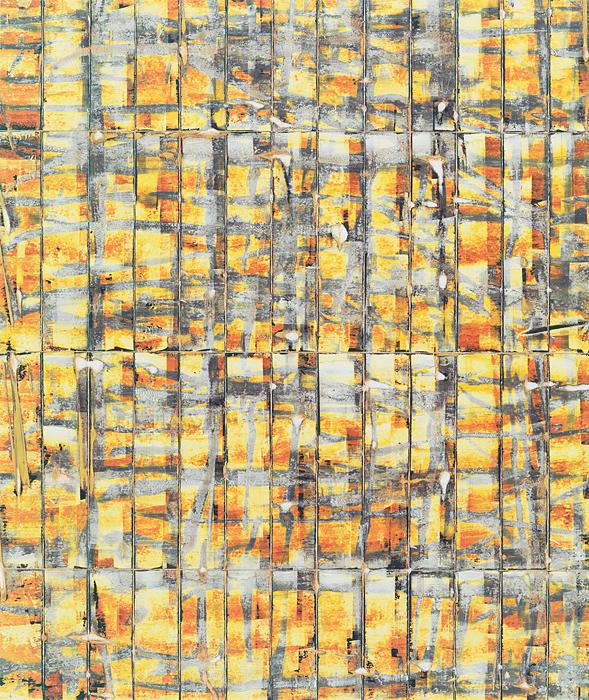 large-marco_breuer-untitled_c_1485